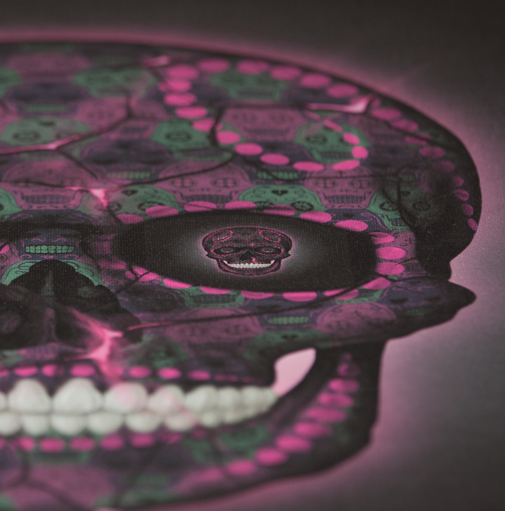 Skull Pink Canvas (Close Up) by Tessellation Art