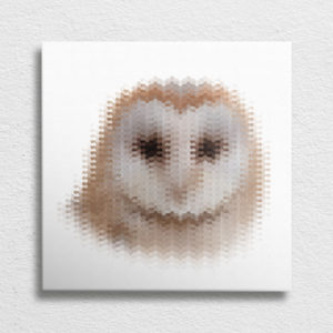 Owl Head Canvas